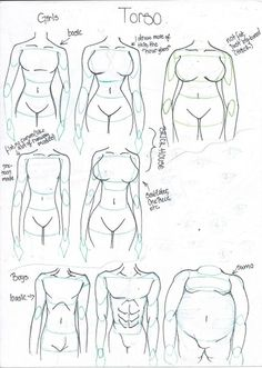 PIPOCA COM BACON - Aprenda a desenhar #2: Corpo Humano - how_to_draw_different_body_types_by_takaya_ame-d55cgje - #PipocaComBacon