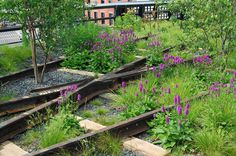 high line NY railways post industrial landscape