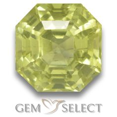 GemSelect features this natural untreated Apatite from Madagascar. This Green Apatite weighs 3ct and measures 7.7 x 7.6mm in size. More Asscher Cut Apatite is available on gemselect.com #birthstones #healing #jewelrystone #loosegemstones #buygems #gemstonelover #naturalgemstone #coloredgemstones #gemstones #gem #gems #gemselect #sale #shopping #gemshopping #naturalapatite #apatite #greenapatite #octagongem #octagongems #greengem #green