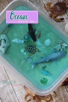 It can be used as a basis for science projects, studying cause and effect, measurement, volume, and so much more. Of course most importantly they are just super fun to play in! Take a look at this fun ocean sensory bin that kids will love!