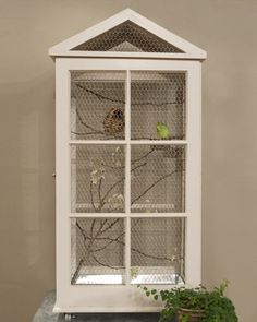 Really cool Bird Cage made from old windows.