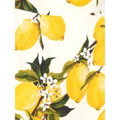 Dolce & Gabbana Lemon-print crepe pencil skirt ($713) ❤ liked on Polyvore featuring skirts, crepe skirt, knee length pencil skirt, slit pencil skirt, slit skirt and white knee length pencil skirt