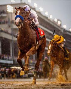 Justify. Big boss horse,