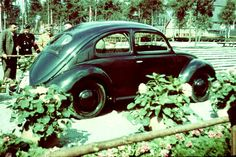 KDFWAGEN 1938 4X4