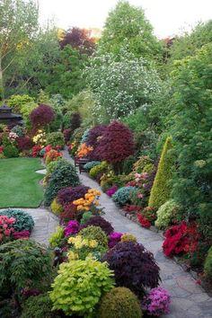 Late Spring Backyard Garden