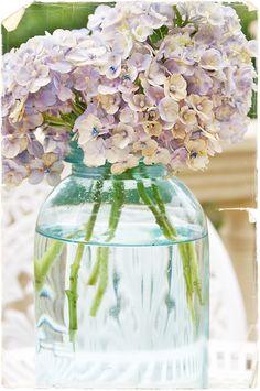 FREE PRINTABLE - Hydrangeas pic for greeting card