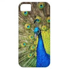 PROUD PEACOCK I PHONE 5 COVER