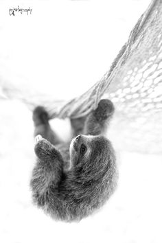 Just hangin' out