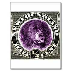 =>quality product          	1887 Newfoundland Dog Postage Stamp Post Cards           	1887 Newfoundland Dog Postage Stamp Post Cards lowest price for you. In addition you can compare price with another store and read helpful reviews. BuyReview          	1887 Newfoundland Dog Postage Stamp Post...Cleck Hot Deals >>> http://www.zazzle.com/1887_newfoundland_dog_postage_stamp_post_cards-239149308207659226?rf=238627982471231924&zbar=1&tc=terrest