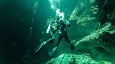 cenote-angelica-rusing-up-photos-lol-news-luggage-online-wallpaper-hd