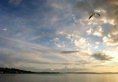 Bainbridge Island ferry