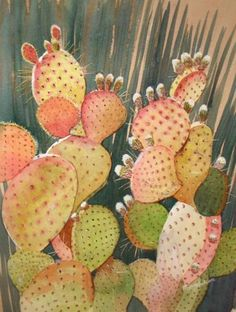 Pink & green cactus