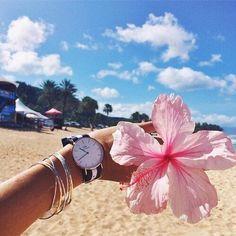 Image via We Heart It https://weheartit.com/entry/169196482/via/32940295 #beach #clouds #flower #hand #love #pink #sand #sea #sum #summer #tu #tumble #tumbler #tumblr #watch