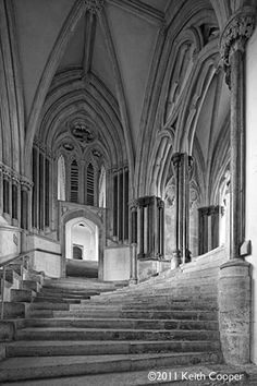 Wells Cathedral, c. 1285, Decorated Style, Architecture, England chapterhouse