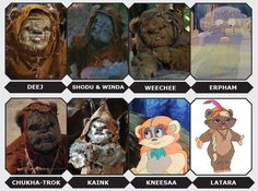 """Get to know Han Solo's favorite tribe of """"little furballs."""""""