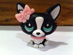 Littlest Pet Shop Black and White Corgi w/ Bow #2245 Rare LPS