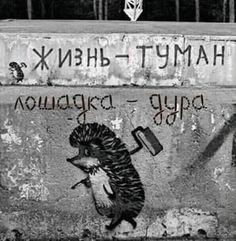 Реалити-шоу «Жизнь в России» (45 фото) Adult Humor, Satire, Goblin, Street Art, Have Fun, Jokes, Funny, Instagram Posts, Home Decor