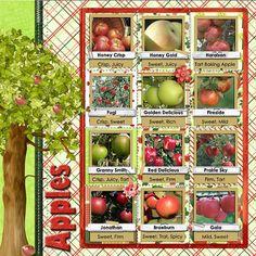 Apple Orchard Digital Scrapbook Kit  Buy 2 by DigiScrapDelights