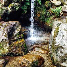 tadaa - Yumiiii's photo 日吉大社の滝なワケですが… 水の音に癒されました。
