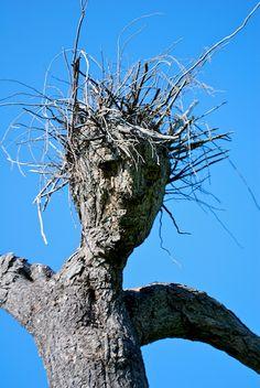 101 Best Slender Man images | Creepypasta slenderman ... Blues Clues Steve Jail