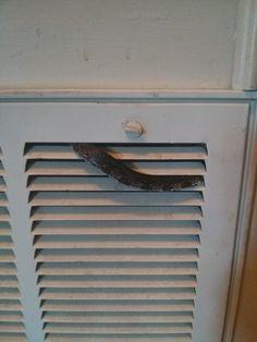 Turtle Vents Vs Ridge Vents Choosing The Right Ventilation System - Bathroom air ventilation