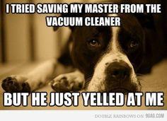 Just dog problems. haha