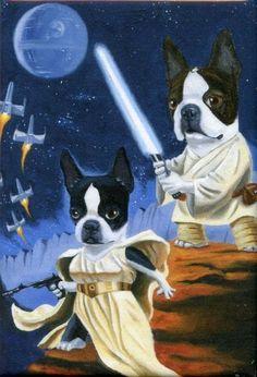 Boston Terrier Luke and Leia Terrier , via Etsy.Brian Rubenacker
