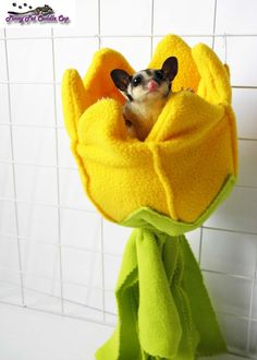 "Dimensions: 6"" diameter opening x 6"" deep x 14"" tall    Sugar Glider Flower Pouch is made of fleece and flat polyester batting to maintain its"