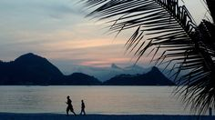 Free photo Sunset Jogging Silhouettes Exercise Beach Palms - Max Pixel