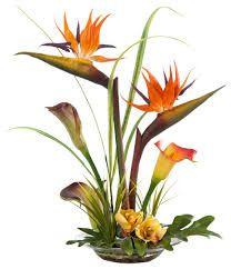 Image result for bird of paradise flower arrangements