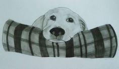 cachorro Dibujo realizado con carboncillo