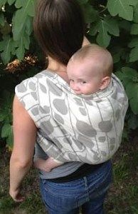 8a72655e165 Review on Poe Wovens Sapling Birch  babywearing Signature Collection