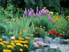 Rock Garden : Rock gardens like this one can be designed to appear like an alpine meadow.  From HGTV.com's Garden Galleries