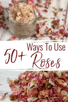 The rose is know for its beauty but did you know that there's a lot more to roses than just bouquets? From skincare, to remedies, to crafts, to food...here are 50+ ways to use roses! Holistic Remedies, Herbal Remedies, Natural Remedies, Homemade Skin Care, Diy Skin Care, Natural Skin Care, Natural Health, Fresh Rose Petals, Essential Oils For Pain