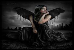 Black Wings -