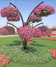 #Dubai_Miracle_Garden in #Dubai - #UAE http://directrooms.com/uae/hotels/dubai-hotels/price1.htm