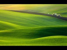 greener pastures nature fields landscapes
