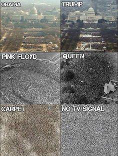 37 Fresh Memes To Make Your Day - Funny Gallery Stupid Memes, Dankest Memes, Funny Jokes, Hilarious, Funny Laugh, Pink Floyd, Music Memes, Fresh Memes, Queen