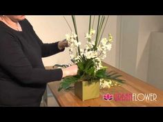 Ceramic Orchids | Urban Flower - YouTube Orchid Arrangements, Flower Delivery, Lush, Orchids, Urban, Ceramics, Flowers, Plants, Diapers