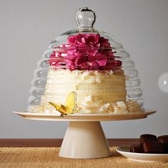 Beehive Cake Stand West Elm