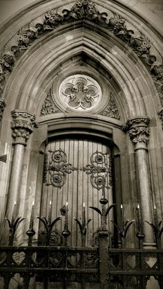 Dublin Ireland, old wooden door, iron, ornaments, curve, beauty, stunning, details, entrance, portal, rustic, photo b/w.
