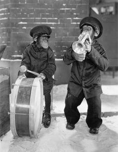Un chimpancé soplando su trompeta es música para los oídos de alguien. Sólo asegúrese de permanecer lejos, muy lejos.