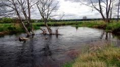rzeka , river