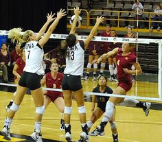 College volleyball girls upskirts yet did