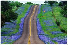 Google Image Result for http://www.loveofbikes.com/wp-content/uploads/2012/03/Texas-hill-country-blue_thumb.jpg