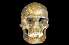 European-Neanderthal Sex Detailed in Ancient DNA : Discovery News... The skull of a man who lived between 36,200 and 38,700 years ago in Kostenki in western Russia