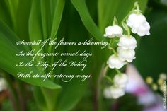 lily of the valley poem - Google otsing