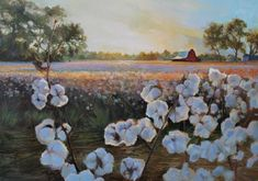 Cotton field painting by Ron Thomson-- what a stunning painting from my favorite place in the world. Painting Lessons, Painting Techniques, Farmhouse Paintings, Cotton Painting, Cotton Fields, Watercolor Paintings, Barn Paintings, Watercolors, Painting Inspiration