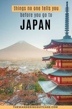 Things you need to know before you go to Japan. Japan travel tips. Everything you need to know about Japan. What no one tells you about visiting Japan. First-timers guide to Japan Japan Travel Guide, Asia Travel, Travel Guides, Tokyo Travel, Travel List, Travel Abroad, Budget Travel, Italy Travel, Go To Japan