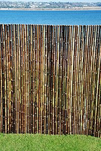 "Black Brown Bamboo Fence.  Commercial Grade   1""x6'x8'.  Great for restaurants, tropical home decor tiki or beach themed backyards. Asian Theme Zen Sushi Bars  805-479-8454  M-F 9am-5pm PST or eBay user ID: TIKITOESCA or email address:  TikiToesCa@aol.com Thanks! Michele Craft.  Click on the picture to take you to order page."